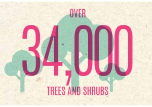 Since December 2007, over 34,000 trees and shrubs spanning over 40 species have been planted all over school, creating the natural, lush green ambience we often take for granted.