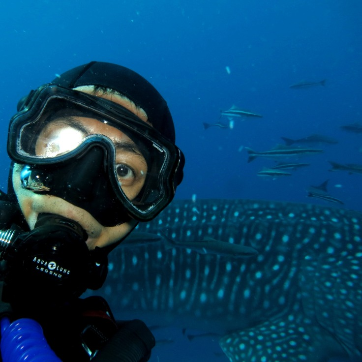 Let me take a selfie ... with a whale shark